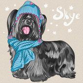 Vector cartoon hipster dog Skye Terrier breed smiling — Stock Vector