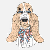 Vector funny cartoon hipster dog Basset Hound — Stock Vector