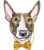 Vector funny cartoon hipster dog Bullterrier  — Stock Vector