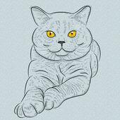 矢量英国短毛猫蓝猫躺着 — 图库矢量图片