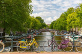 City view of Amsterdam canals and typical houses, Holland, Nethe — Stock Photo