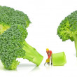 Broccoli being cut — Stock Photo