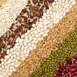 Stock Photo: Grains