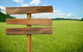 Wooden sign on field grass — Stock Photo