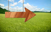 Wooden sign on field gras — Stock Photo