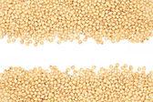 Soybeans frame — Stock Photo