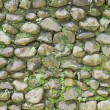 Stone wall. — Stock Photo #25379845