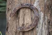 Rusty lucky horseshoe. — Stock Photo