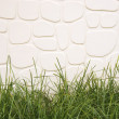 Grass and white wall background. — ストック写真