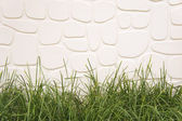 Grass and white wall background. — Stock Photo
