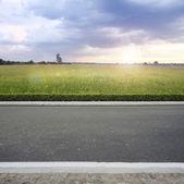 Roadside — Стоковое фото