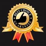 Best choice — Stock Vector #29294731