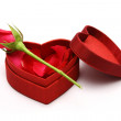 Valentines Day — Stock Photo #29305617