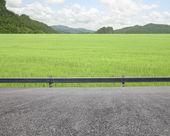 Roadside — Stock Photo