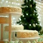 Winter cake — Stock Photo