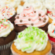 Royalty-Free Stock Photo: Multicolor cupcakes