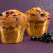 Stock Photo: Muffins with black currants