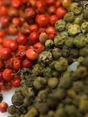 Peper red green — Stock Photo