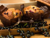 Traditional blackcurrant muffins — Stock Photo