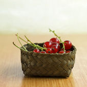 Delicious red currants freshly harvested — Stock Photo