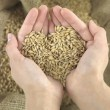 Stock Photo: Wheat heart