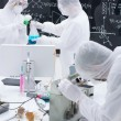 Working in a laboratory — Stock Photo