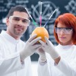 Постер, плакат: Laboratory grapefruit experiment