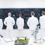 Co-workers laboratory analysis — Stock Photo