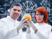 Laboratorium grapefruit experiment — Stockfoto