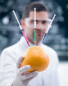 Grapefruit chemical reseach — Stock fotografie