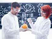 Laboratory grapefruit experiment — Stock Photo