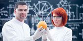 Laboratory studies on grapefruit — Stock Photo