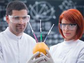 Experimental studies on a grapefruit — Stock Photo