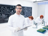 Researchers working in a chemistry lab — Stock Photo