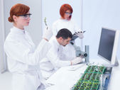 Laboratory plant study — Stock Photo