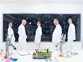 Researcher team in laboratory — Stock Photo