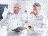 Researchers lab data analysis — Stock Photo