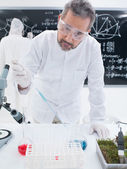 Chemistry laboratory experiment — Stock Photo