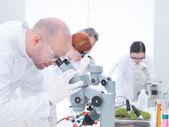 Man analyzing under microscope — Stock Photo