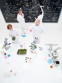 Laboratory experiments — Stock Photo