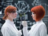 植物对抗技术 — 图库照片