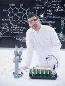 Scientist analyzing plants in lab — Stock Photo