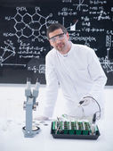 Scientist analyzing plants in lab — Stock Photo