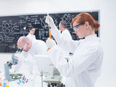 Scientists laboratory experiments — Stock Photo