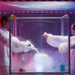 Making chemicals mix in a sterile chamber — Stock Photo