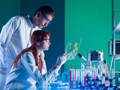Pharmaceutical scientists studying a sample — Stock Photo