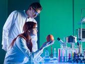 Vědci studují grapefruit — Stock fotografie