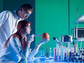 Laboratory experiment on a grapefruit — Stock Photo