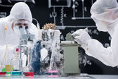 Laboratory scientists working with microscopes — Photo
