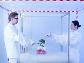 Experimenting on vegetables with liquid nitrogen — Stock Photo